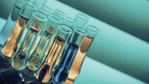 Закон о добавлении биоэтанола во все виды топлива могут принять в первом чтении.