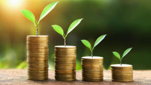 НАУ за сбалансированные ставки акцизного налога на топливо
