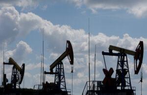 «Чому попри всі умови , щоб ринок пального був білим, ми знов коло розбитого корита?», – Данило Гетманцев